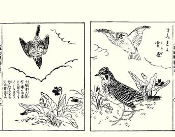 Woodblock Print Artists Exhibition of the Reader Collection of